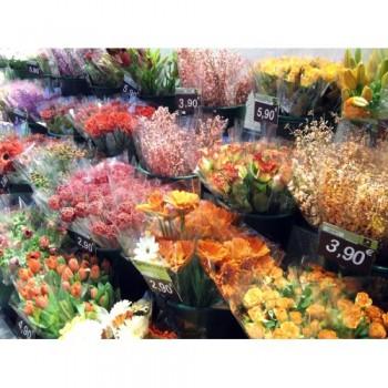 Fleuriste CARREMENT FLEURS Cahors, fleuriste à Cahors, fleurs en tout genre.