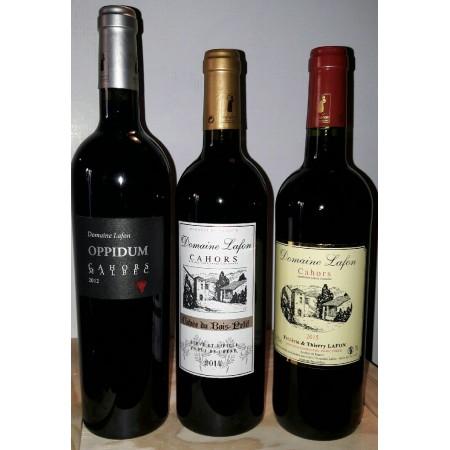 Les caves à vin LAFON Cahors, cave à vin de Cahors, c'est une cave à vin directement au domaine viticole Lafon à Luzech.