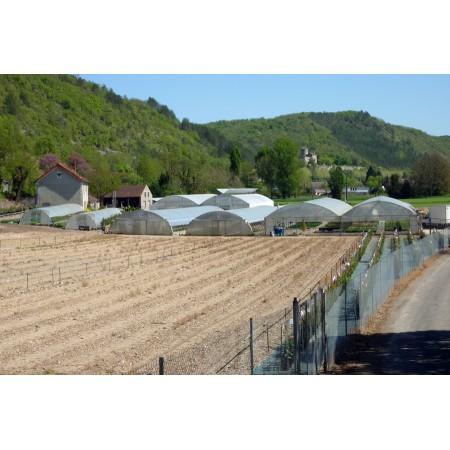 Jardinerie HORTISYL Cahors, fleuriste, jardinerie, fleurs et bouquets à Cahors