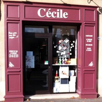 Institut de beauté CECILE Cahors, salon de soins esthétiques, relooking, onglerie, et centre de soin à Cahors.
