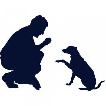 Martin ROBERT, éducateur canin Cahors, éducation canine, conseil en alimentation canine, randonnée canine, médiation assistée.